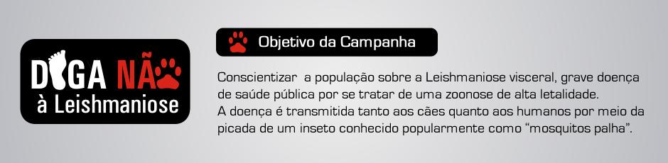 banner-objetivo-campanha